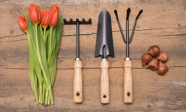 Gardening terms and definitions