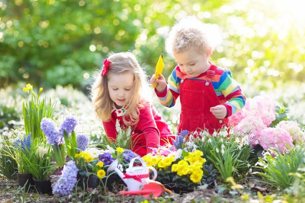 Kids planting flowers