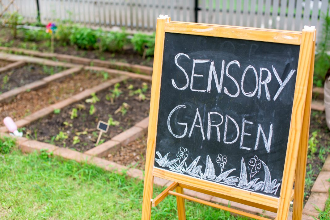 Plants And Gardening Tips For Creating A Sensory Garden Kids Do