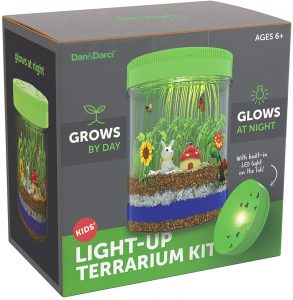 Dan&Darci Light-up Terrarium Kit for Kids