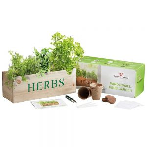 Wooden Herb Growing Kit