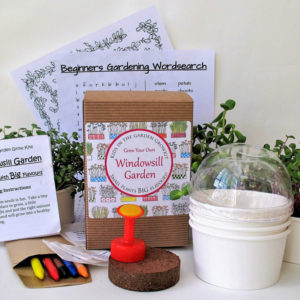 Children's windowsill growing kit