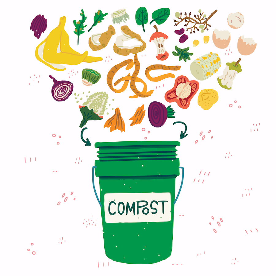 What to put in a compost bin